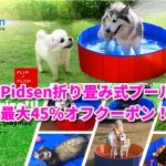 8月5日まで! 水遊びにぴったりPidsen折り畳み式プール最大45%オフクーポン!